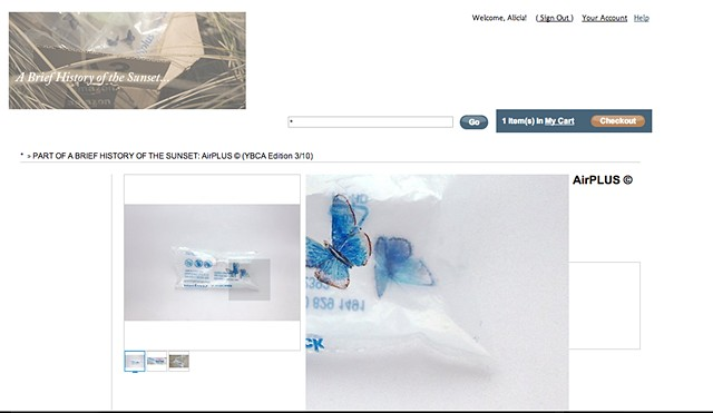 Screen shots from the temporary online amazon e-commerce shop. The shop was both fictional but fully shoppable.