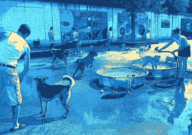 Dog Days of Bucktown (blue)