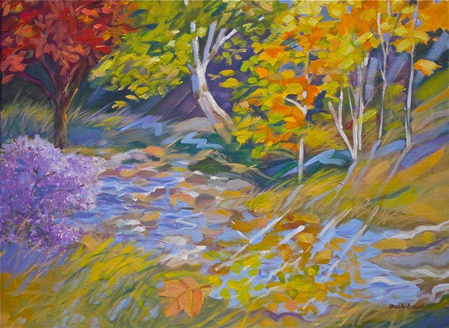 a lot of color and motion- Fall at Gregory Creek
