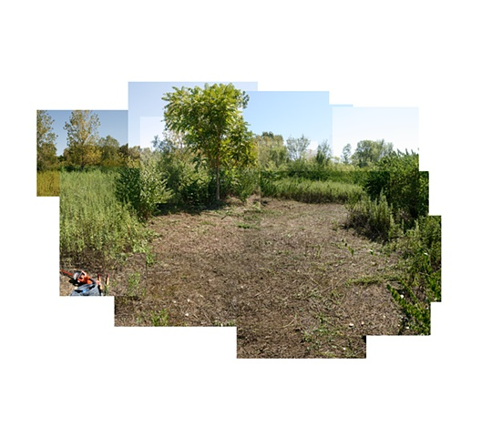Pruitt-Igoe Bee Sanctuary