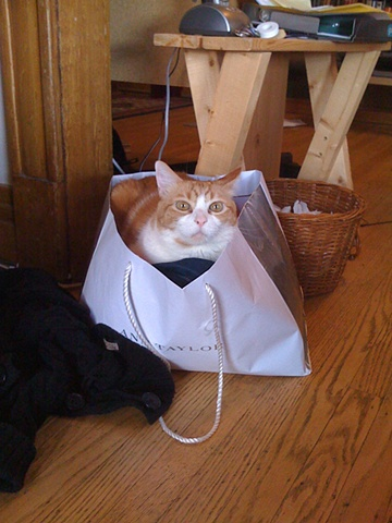 Boo in the Bag