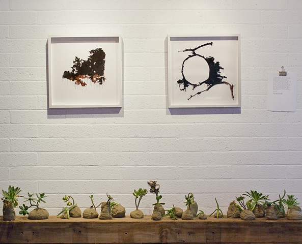 Watershed Cloth and Feral Garden Install Image