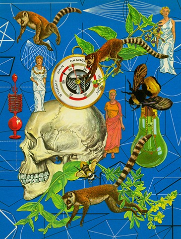 lemurs global warming climate change goddess skull collage