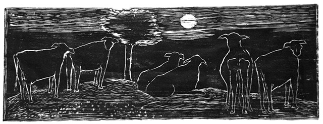 Cows in Moonlight
