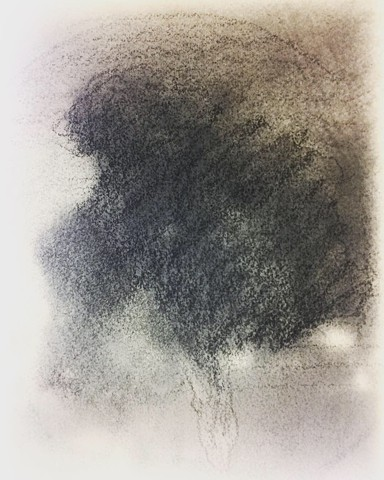 Tree Study II Lakeview, Seattle Graphite December, 2018