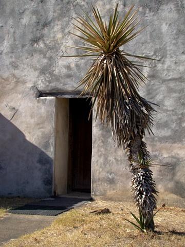 Mission San Juan Door