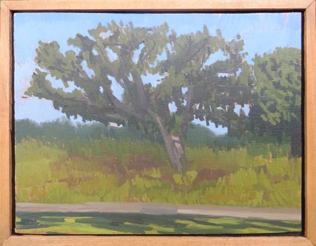 Mckinley Woods