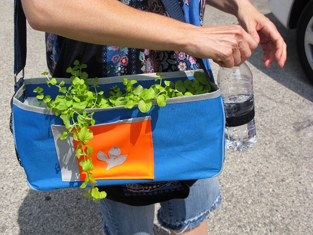 Plant Backpacks