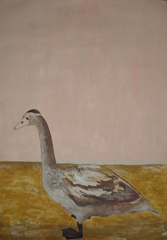 Duck with Pink Background