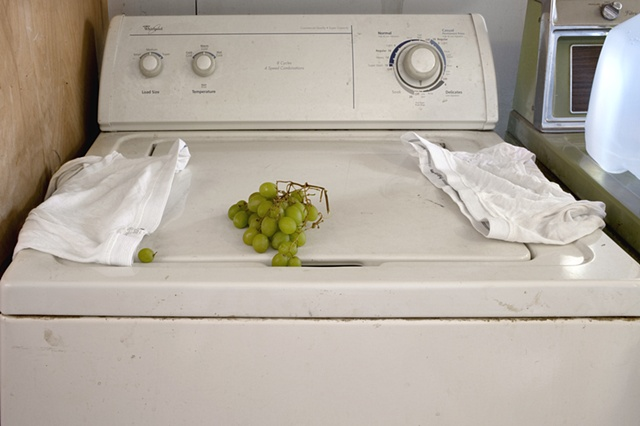 Still Life with Whitie Tighties and Forgotten Grapes