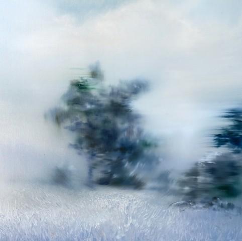 A Yard Where the Trees Grow Blue