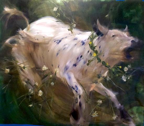 Wilding the Dandelion Gardner's Bull