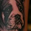 dog arm