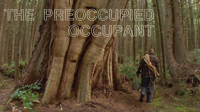 """The Preoccupied Occupant""  (Part 2 of a seamless, narrative loop)"