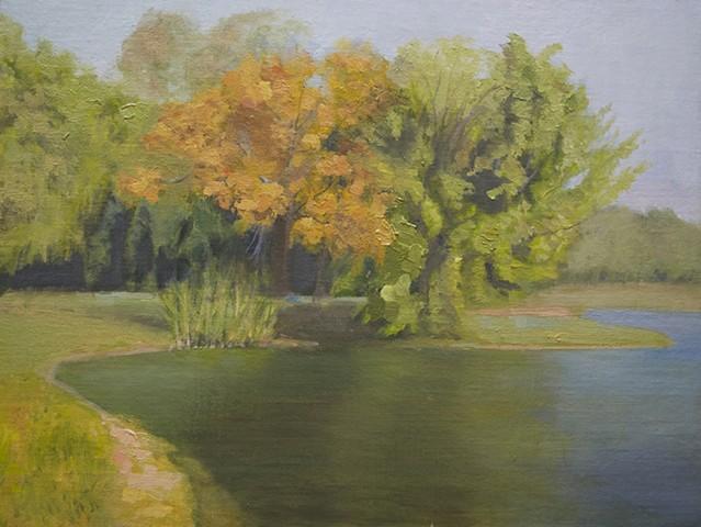 Landscape Study 13
