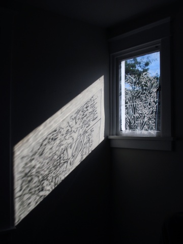 Tree Window Tracing