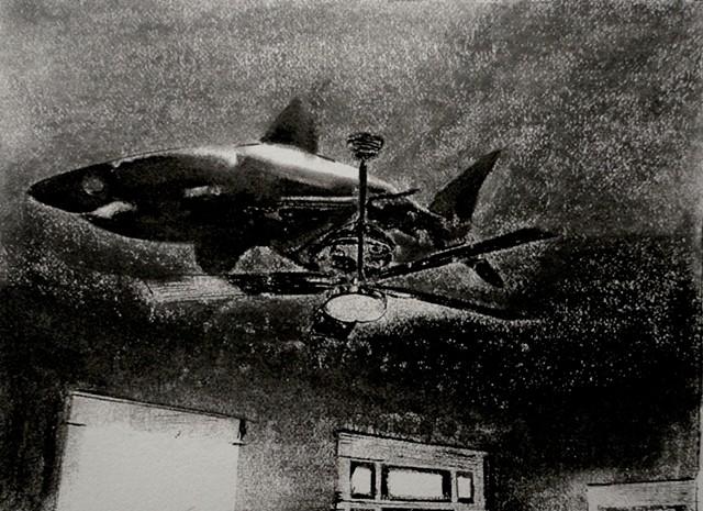 empty room shark
