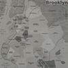 Gentrification Map