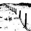 Beach Fence Litho