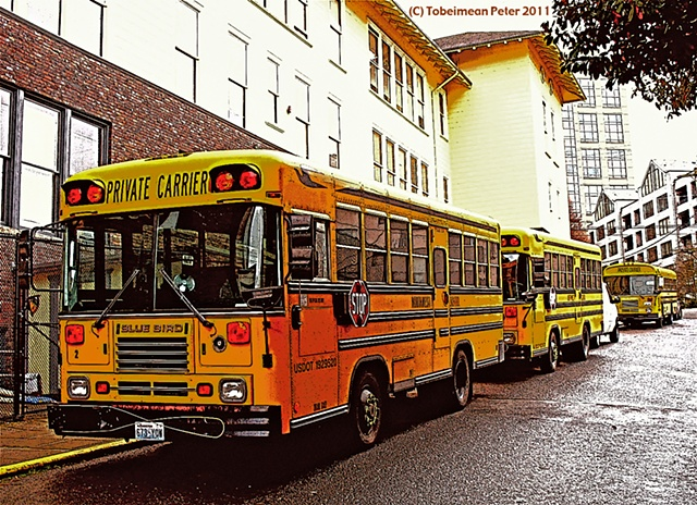School Buses parked alongside the Northwest School.
