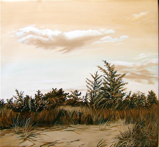 Sunken Meadow Dunes
