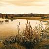 Crabmeadow Inlet