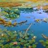 Pondscape II