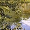 Pondscape I