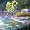Bull Creek I