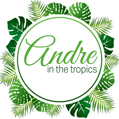Andre in the Tropics Logo