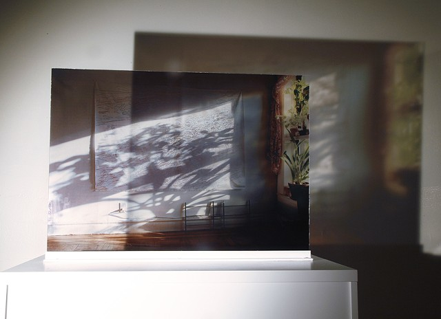 The Shadow cast from the glass photo of the canvas.