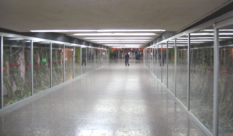 Installation View, Metro Alameda, Center Corridor