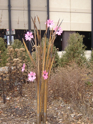 Six Pink Flowers for Melrose Institute