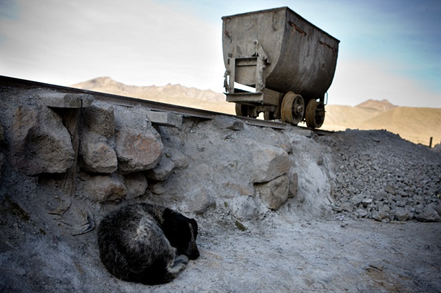 "Dogs are an important part in the life of the mines. They are fierce guardians of the ""bocaminas"" (entrances to mines) and houses in Cerro Rico, thus they represent a constant danger to people and specially children who live in the area. There are thousan"