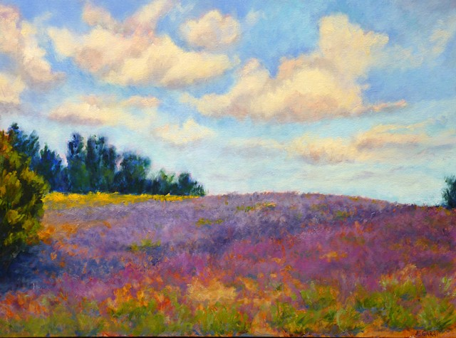 The Clouds Danced Above the Lavender Fields