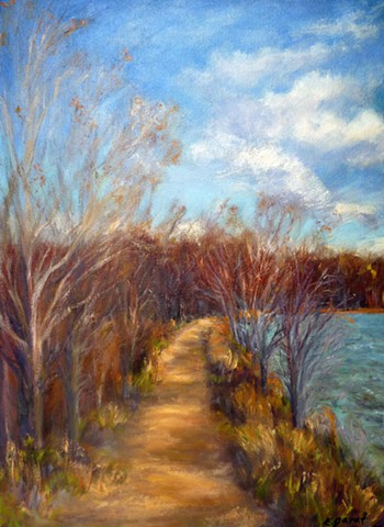 Path Beside the Lake