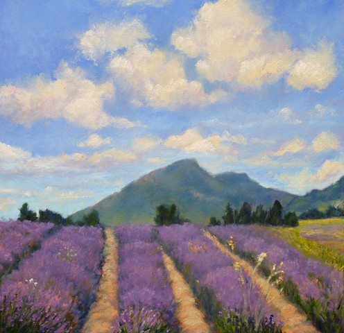 Lavender Rows in Haute Provence