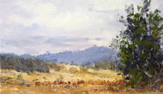 Off Hwy 150 Near Lake Casitas, Ojai, CA, AM painting