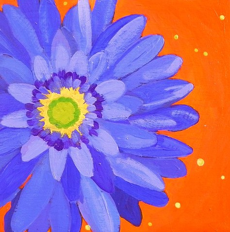 Lavender blue, flowers, gerbera daisies, colorful,