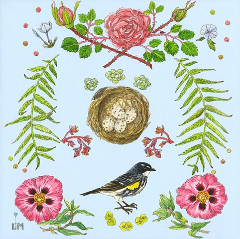 birds, nest, roses, orchid rock roses, rock roses, nesting, pepper tree, trees, nature