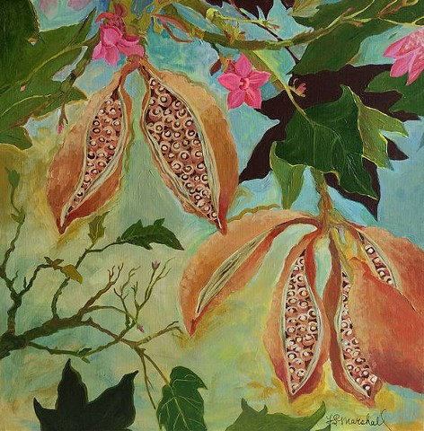 Tree, pink, pink flowers, pods, Lace Bark Tree, Tree paintings, botanical, botanical art