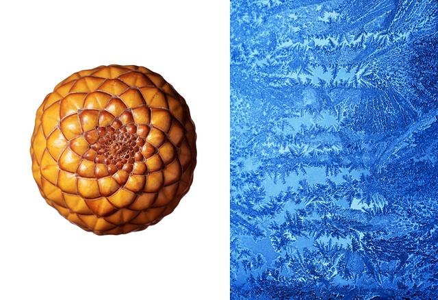 Ambulong Nut / Frost