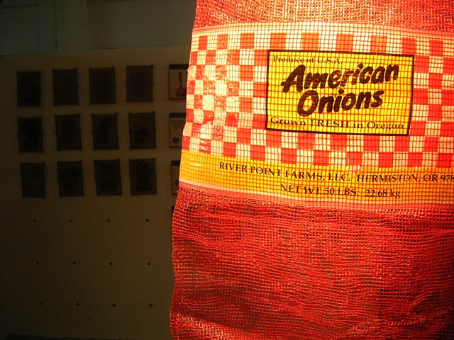 american onion lamp project