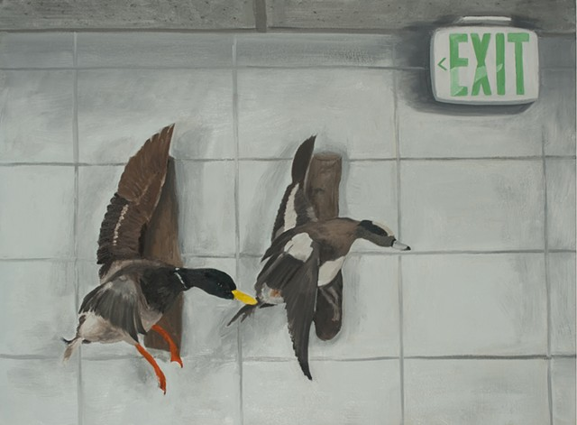Exiting Ducks