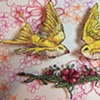 Yellow Swallows