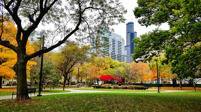 Autumn in South Loop