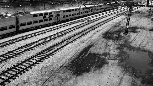 Grant Park Rails with Puddle
