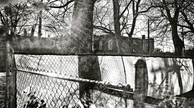 Sun and Shadow, Fences and Trees