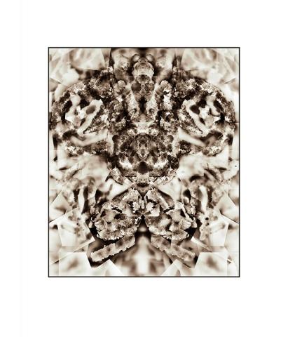 Crystal Rorschach (Specimen No. 1)