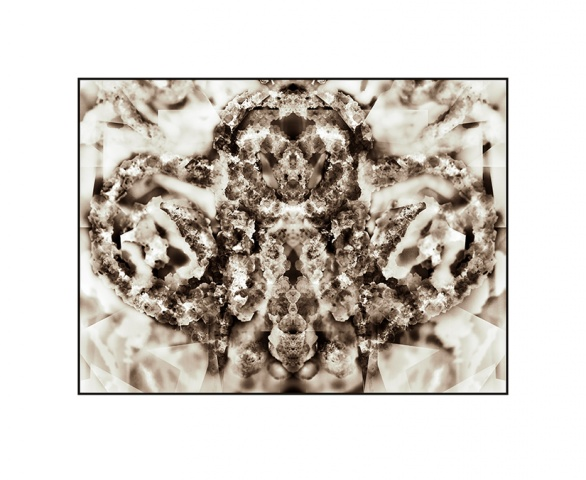 Crystal Rorschach Specimen (No. 4)